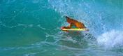 Havajské ostrovy - ostrov Maui - surfování