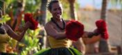 Havajské ostrovy - ostrov Havaj - tanečnice