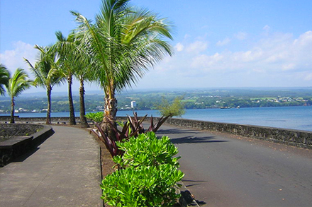 ostrov Havaj, město Hilo, Banyan Drive